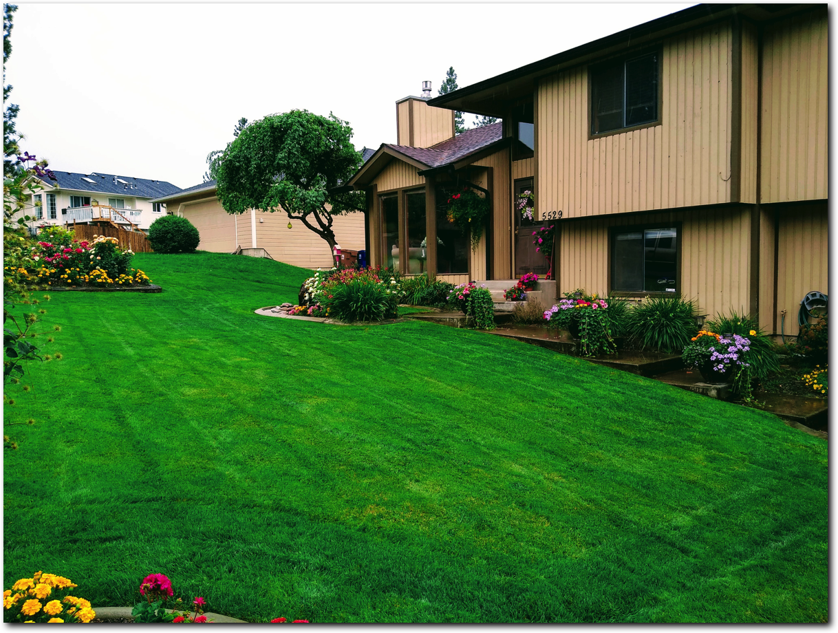 Spokane weekly mowing services